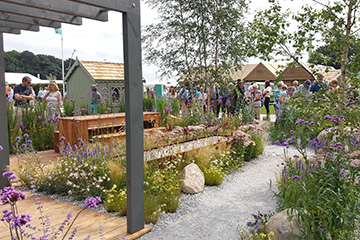 Alumnus wins gold at RHS Tatton Park Flower Show